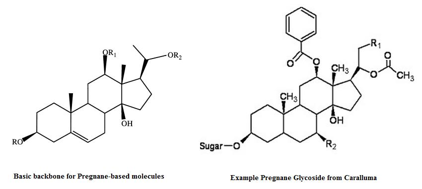 steroidal glycoside structure